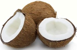 Coconut Allergy